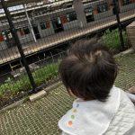 志木駅丸井の中にある中川眼科が土日祝もやっていて助かった!しかも隣のUSランドで待ち時間遊べます!