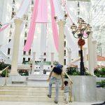 子連れディズニーシー【ホテル編】東京ベイ舞浜ホテルクラブリゾートに1歳半息子と宿泊、超快適でした♩