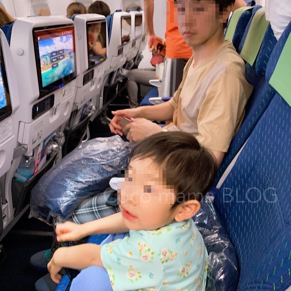 ANA フライングホヌ カウチシートが最高だったレビュー!子連れハワイ旅行